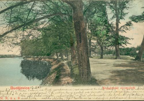 Krumlovské stromořadí (1905)
