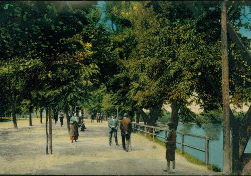 Linecké stromořadí (1915)