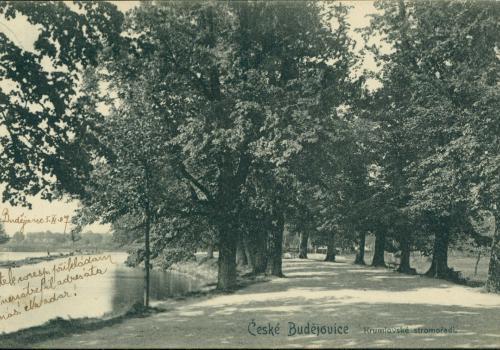 Krumlovské stromořadí (1907)
